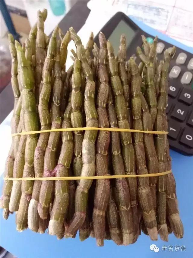 鲜石斛的吃法,原创丨铁皮石斛鲜条的保存及食用方法