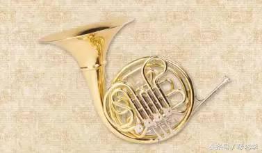 铜管乐器有哪些,乐器养护丨铜管中的交响乐之王 圆号