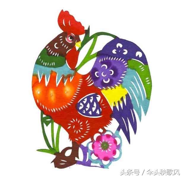 """鸡什么成语,2017年鸡年说鸡:包含""""鸡""""字的成语大全带解释50个《风》"""