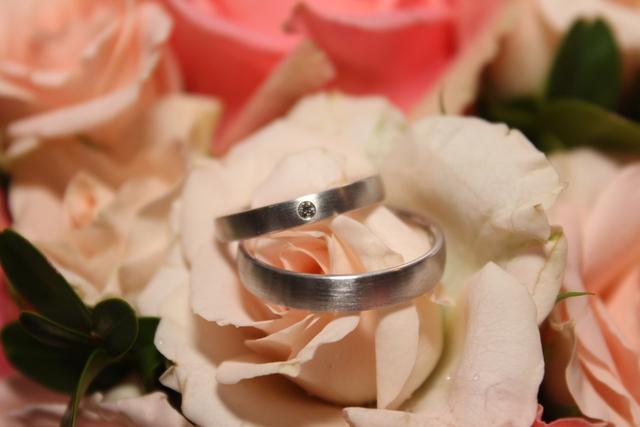 求婚朋友祝福语,2018令人感动的求婚短信 唯美霸气求婚精选