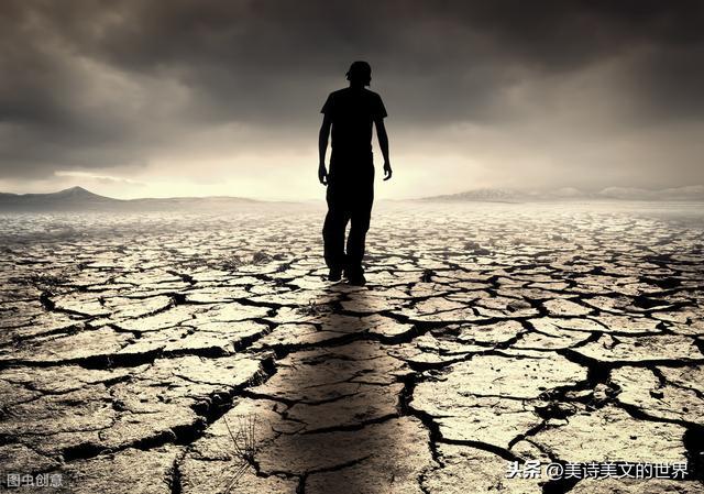 风的全诗,林语堂最妙的一首打油诗,全诗无一孤独字眼,却是孤独的最高境界