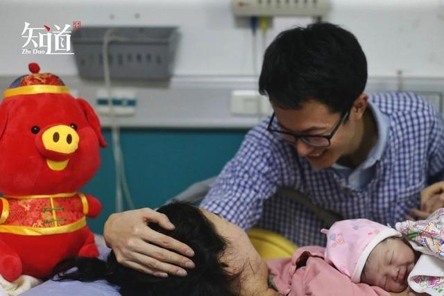 金猪寓意,中国人爱抢生金猪宝宝?生肖会影响人的命运?