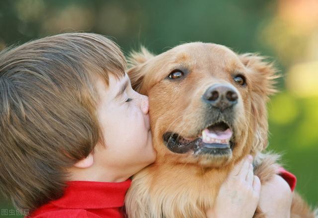 """婴儿 狗,容易""""伤到""""孩子的7种狗,有小孩的家庭慎养"""