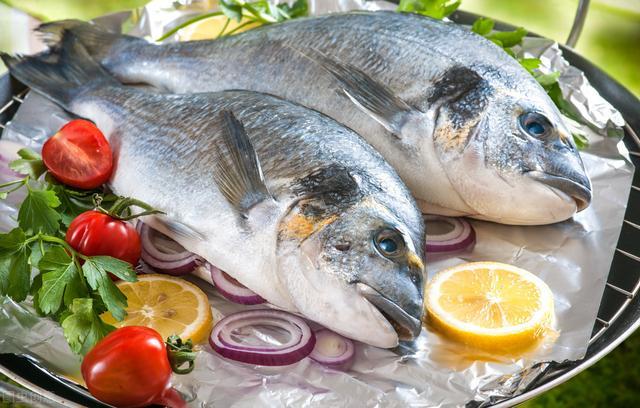 深海鱼有哪些,孕期补充DHA,这几种深海鱼更合适,准妈妈吃得好,宝宝更聪明