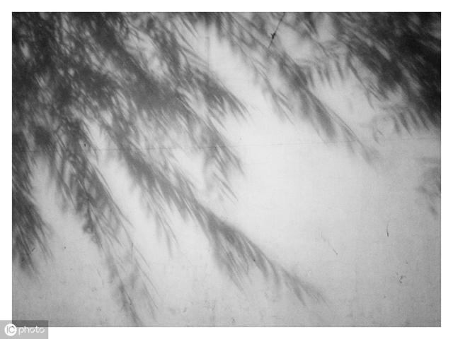 含雨的成语,易经中的成语——云行雨施