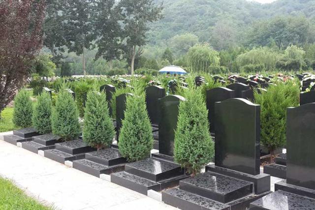殡葬行业成为五大最赚钱的行业之一,利润完爆房地产行业