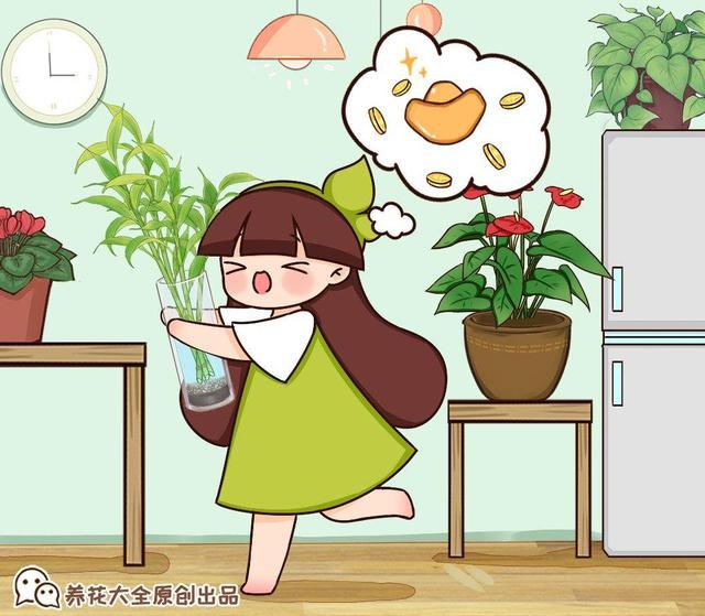 梅兰竹菊的象征意义,家里不能养竹子?最适合摆在桌子上的竹子,比花还好看