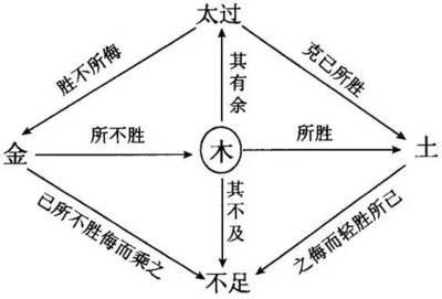 八字土旺缺木,不可忽略的命理入门知识——五行反侮