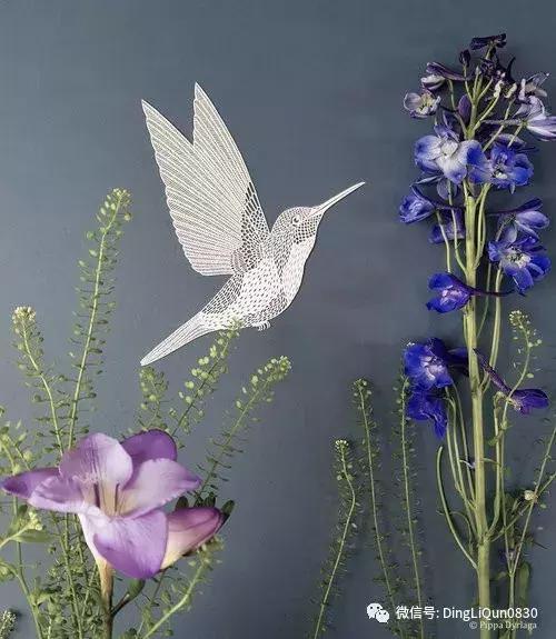 剪纸手工制作大全图片,「剪纸作品」一组关于鸟类、动物和植物的剪纸作品欣赏
