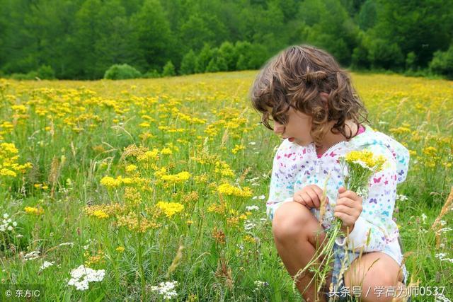 """描写景色的句子,一""""叶""""知秋:描写秋叶的诗句和精彩句子集萃"""