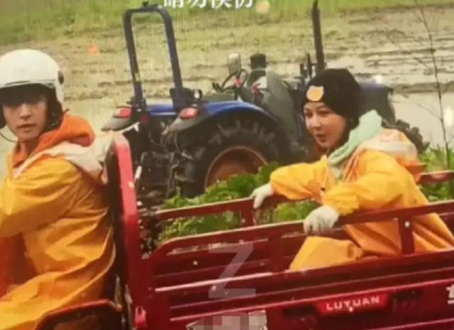 杨紫和张艺兴被疑恋爱,被杜华点赞,杨紫被曝与男方录节目显亲密 全球新闻风头榜 第5张