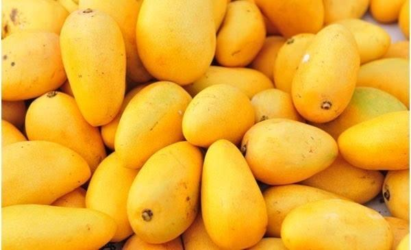 芒果怎么切,吃了30年芒果,才知道芒果可以这样切,不脏手不流汁,早知早受益