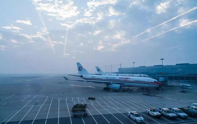 上海机场股票,向上海机场致敬!董事长高喊:公司基本面已烂,散户投资者别买了