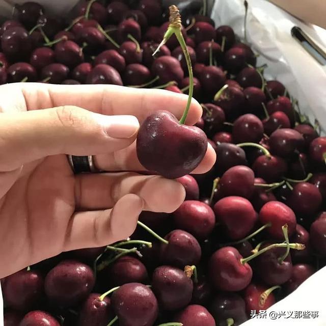 水果寓意,水果的吉祥寓意,你都知道吗?贵州兴义这家店告诉你