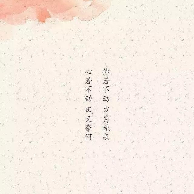 烟花的唯美句子,唯美古风句子:看庭前花开花落;去留无意,望天空云卷云舒