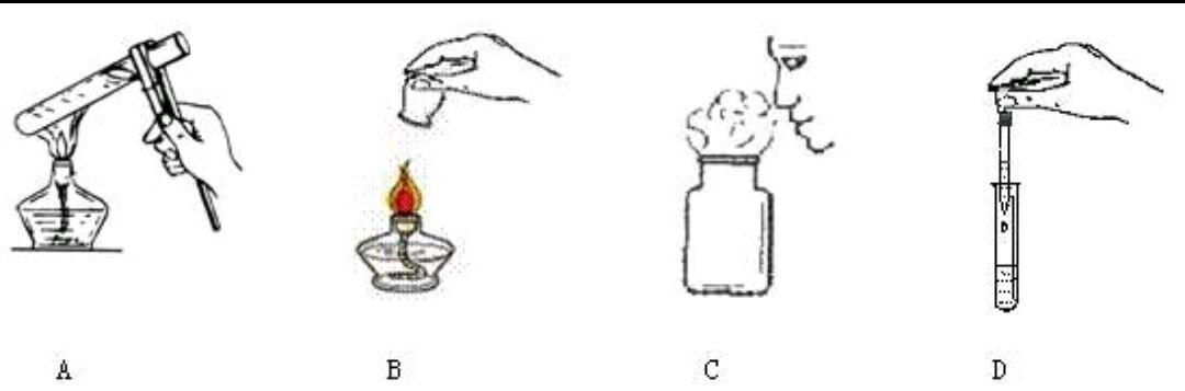 九年级化学期中考试必考知识点来了,收好不谢