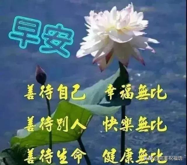 善良短句,一生之路,平坦为佳;一人之心,善良为美,早安