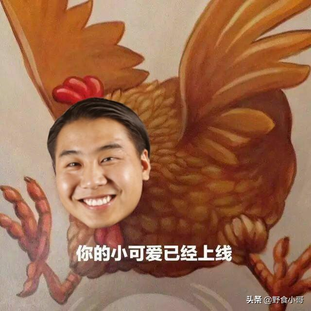 鸡怎么做好吃,叫花鸡应该怎么做才好吃?小哥教你在野外也照样可以吃到香香的鸡