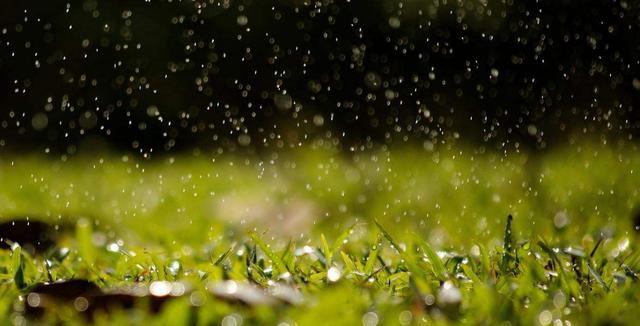 描写雨的句子,10句写雨的唯美诗词:平湖漠漠雨霏霏,压水人家燕子飞