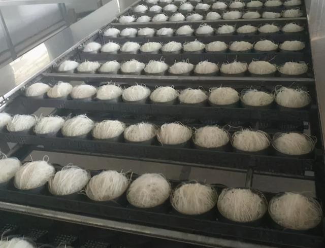 怎么做米粉,陈辉球的新型米粉生产线,哪款适合做即食米粉?
