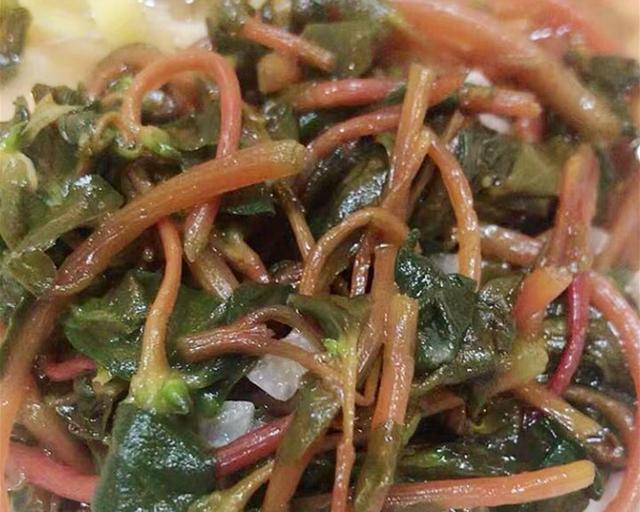 马齿苋的吃法,这菜浑身都是宝,可惜很多人当草,简单一拌就上桌,现在吃正当季