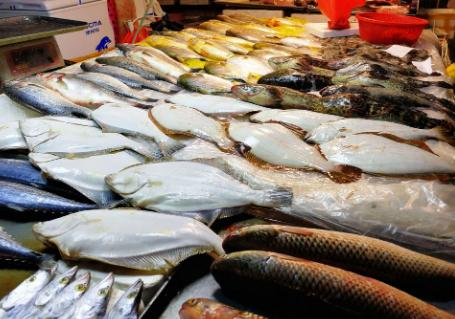 深海鱼有哪些,市场上这6种鱼放心购买,都是人工捕捞海鱼,营养丰盛,口感极佳