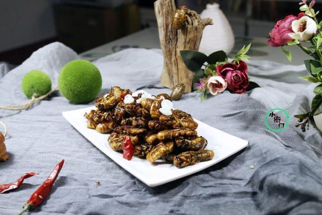 金蝉的吃法,金蝉新吃法,这样做干净卫生,味道鲜美,南方人表示:不敢吃