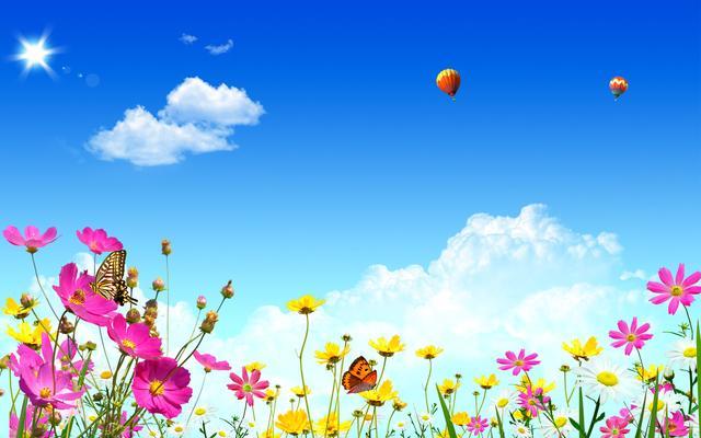 草地图片,高清图绿色草地花朵蓝天蝴蝶阳光