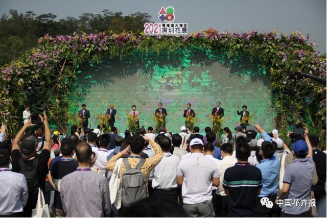花卉博览会,一头扎进花花世界,2021粤港澳大湾区深圳花展今日开幕