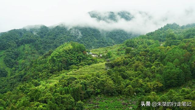 """牯牛降风景区,皖南三座高峰之一,坐落于两县交界处,古称""""西黄山""""却少有人知"""