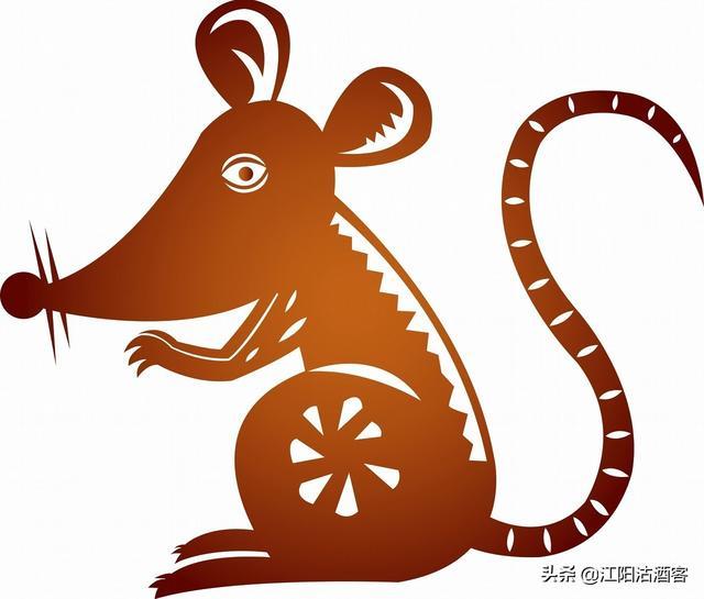 鼠寓意,岁逢庚子是鼠年,谈古论今话老鼠