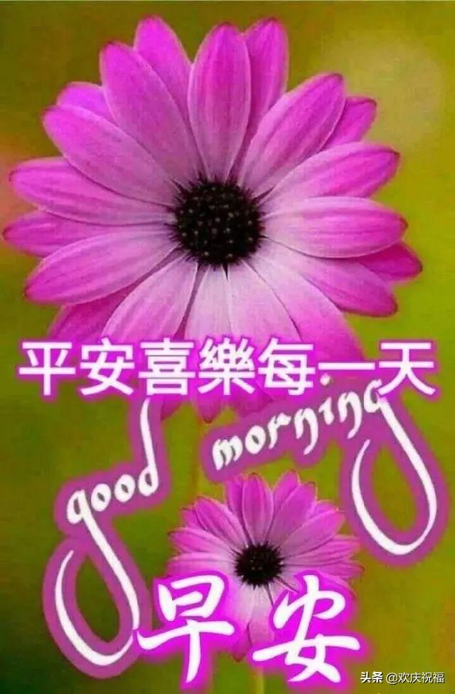 短句祝福语,2019最新早上好问候短句,早上暖心的祝福语图片