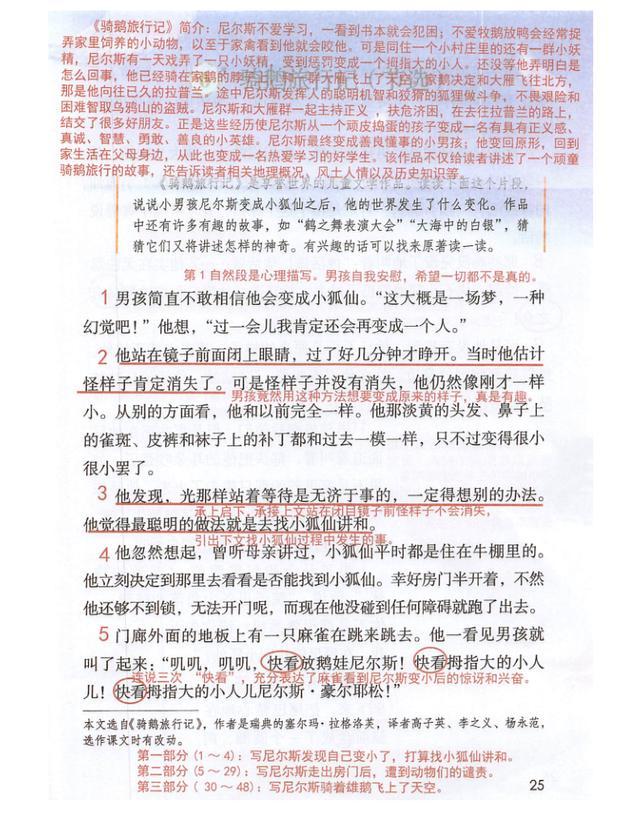 """六年级语文下,《骑鹅旅行记(节选)》之""""课前+课后""""资料"""