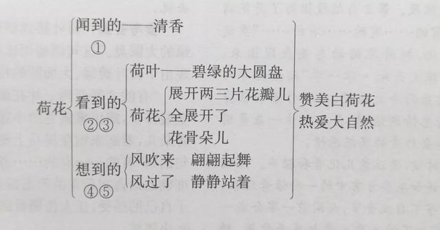 表示人多的成语,三年级下语文第一单元知识点(附练习题及答案)