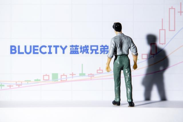 """鼎晖投资,""""粉红经济第一股""""蓝城兄弟营收超十亿元,会员服务收入同比翻倍"""