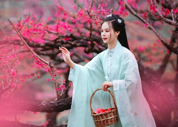 杜甫的四句诗,杜甫的这首诗只有4句,却惊艳了整个春天,美得令人神往