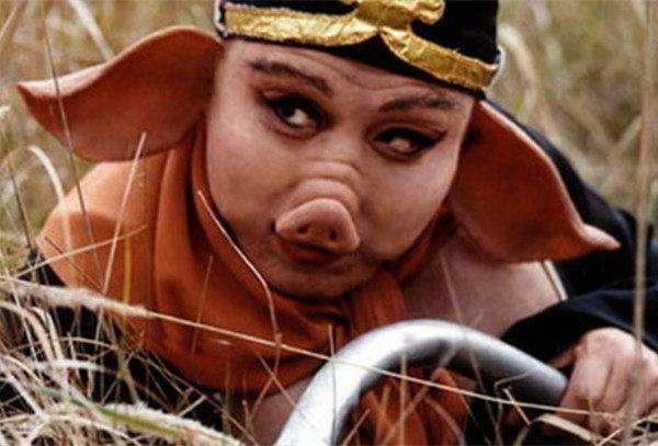 """猪的成语,猪年关于""""猪""""的成语有哪些?"""