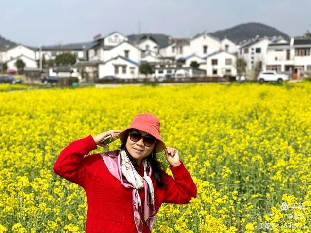 一句看油菜花的心情,我在南京江宁佘村欣赏到春天的景致,油菜花盛开了