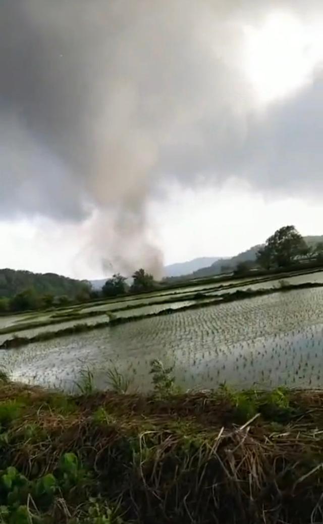 哈尔滨尚志遭龙卷风袭击,1死8伤!高铁帽儿山段停运 全球新闻风头榜 第3张