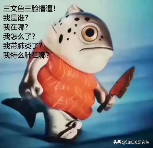 三文鱼图片,三文鱼从海里到餐桌都经历了什么?相关专利get一下