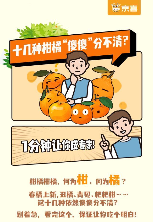 橘子品种,十几种桔子让北方人彻底凌乱,你能分得清吗?