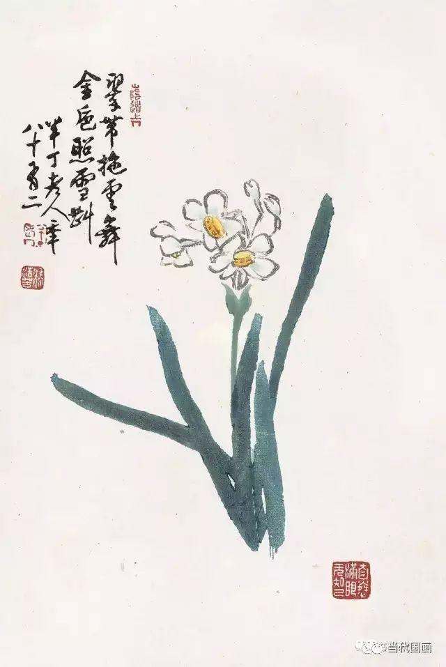 名人画的画,五位花鸟名家笔下的水仙图辑录欣赏