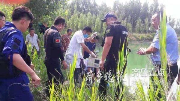 千里来青见网友 33岁福建女子与男子游泳时溺亡 全球新闻风头榜 第1张