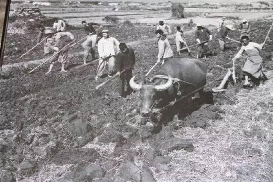 劳动节的意义,关于五一国际劳动节,我们应该知道什么?