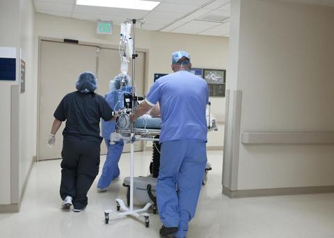 全世界总计诊断新冠肺炎病案115249203例