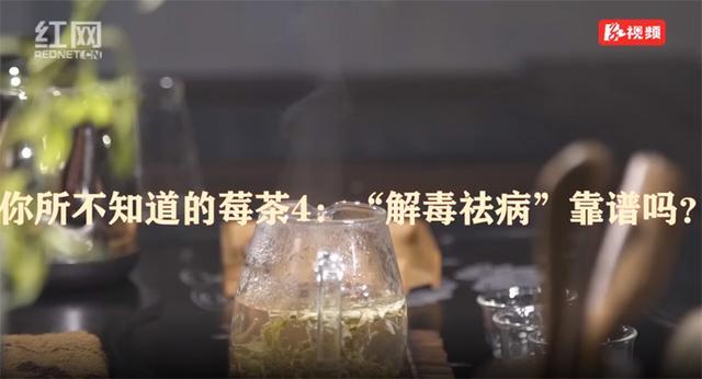 莓茶的吃法,你所不知道的莓茶