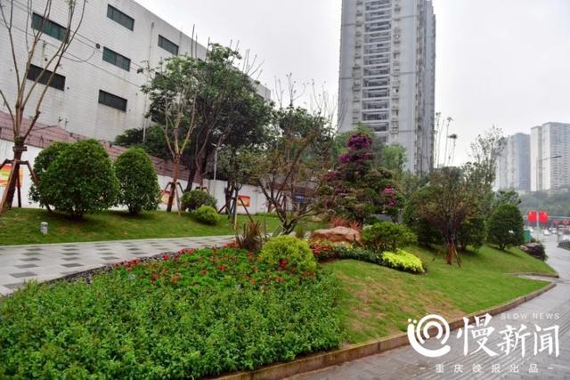 陶行知的名言,目所及处皆公园,脚所至处尽整洁 九龙坡成了居民心中的后花园