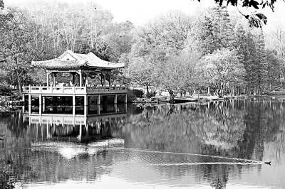 南京的名人,南京城在文学的时间里生长