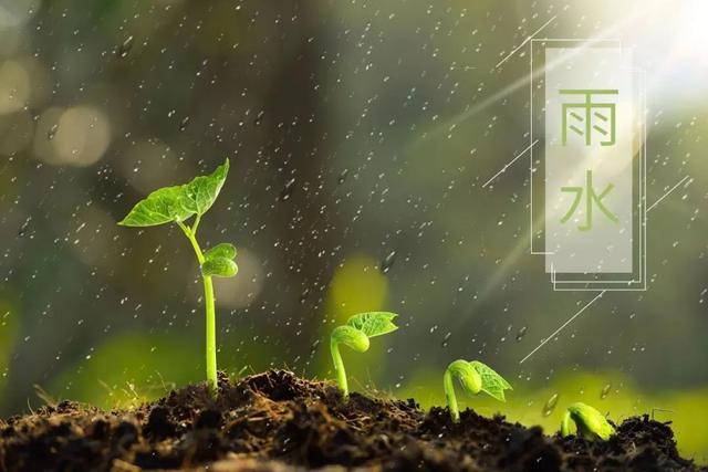 描写大自然的诗,雨水节气:关于春雨的10首诗词,一起来品读