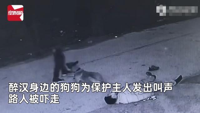 主人醉倒路边宠物狗忠心死守身旁!连声吼叫求救 路人却反被吓跑 全球新闻风头榜 第2张